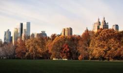 E' arrivato l'autunno, anche a New York!