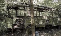 La storia di un autobus lasciato al totale decadimento nella foresta