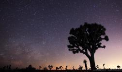 Viaggio nella natura, in uno dei migliori time-lapse recensiti da noi