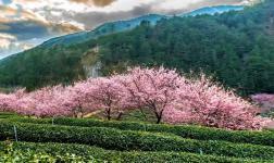 Taiwan: un angolo del mondo da visitare