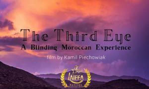 TLN The third eye timelapse