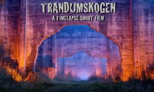 Trandumskogen - A timelapse short film
