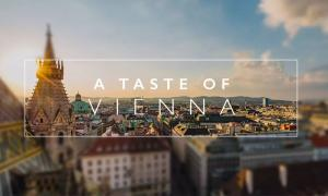 a-taste-of-vienna-best-timelapse-2016