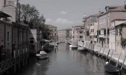 Il silenzio dei Gabbiani: quando Venezia si svuota